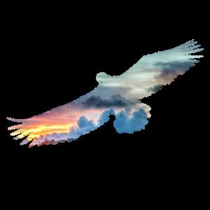 Adler Doppelbelichtung Motiv