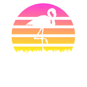 flamingo sunset sonnenuntergang flamingos