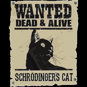 Gesucht tot und lebendig Schrödingers Katze