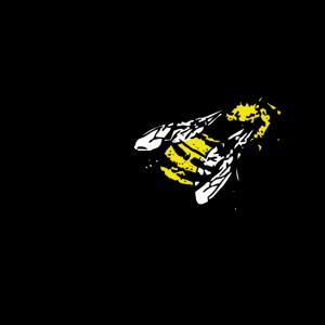 chuck norris kaut bienen