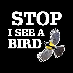 Halt! Ich sehe einen Vogel