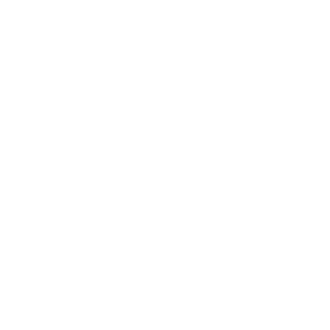 Correctional Officer Fakten Shirt