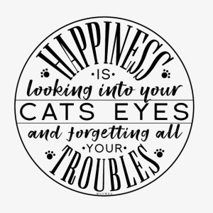 Happiness is Cat II