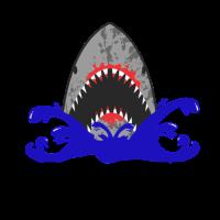 Shark Meow