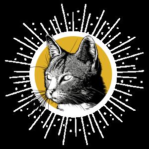 Katze Mietz Miau Mietze Kater Geschenk