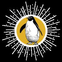 Pinguin Antarktis SüdpolOzean Eis Geschenk