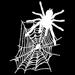Vogelspinne Spinnennetz Tier Halloween Geschenk