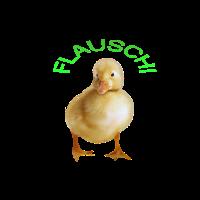 Flauschi