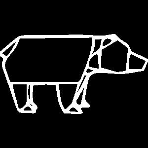 Bär, Braunbär, Eisbär
