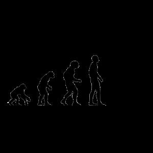 evolution betrunken