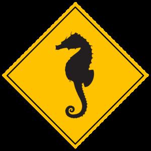 Warnung Seepferdchen
