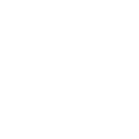 Bachelor of Science w