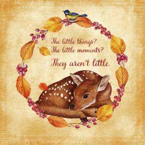 Herbstfreunde - die kleinen Dinge - Rehkitz