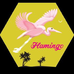 flamingo t shirt. Geschenkidde