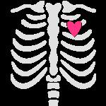 Maternity Skeleton ribcage