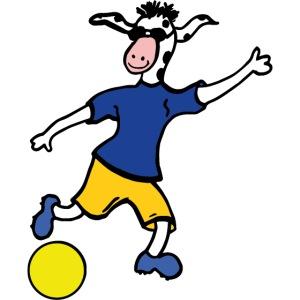 Cowly Fussball Top