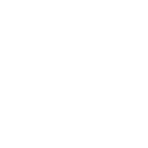 Löwe Silhouette