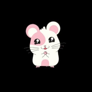 Maus Mäuse