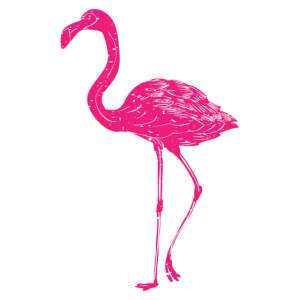 Cute Flamingo - Netter Flamingo