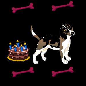 Hundegeburtstag und GeburtstagsKuchen