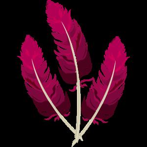Federn rosa pink