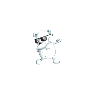 Birthday Boy I Geburtstagskind I Junge Geburtstag