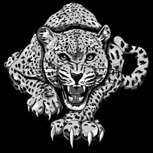 KutuXa Leopard