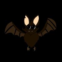 Kindershirt und Hoodie - Kleine Fledermaus