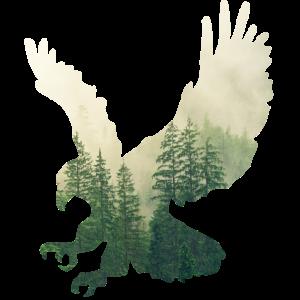 Falkenflug durch den Wald