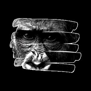 Affenmotiv , Affe