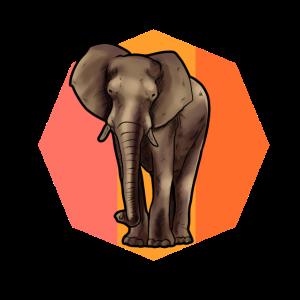 Elefant Tier Afrika Indien Reiten Safari Thailand