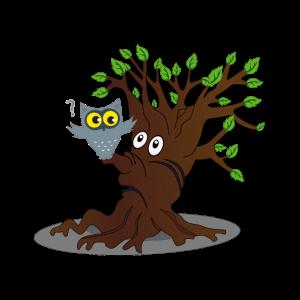 Eule fragt Baum Nest Überraschung Eiche Wurzel