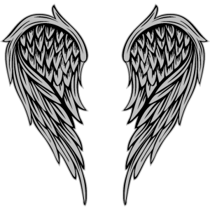 Flügel Silber