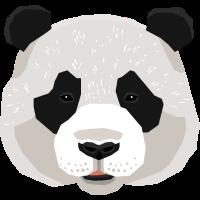 Panda Pandabär