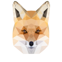 The Fox Fuchs Polygon