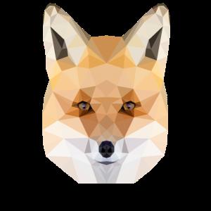 The Fox Fuchs Polygon