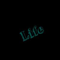 back to life lebenslust verlust geschenk schwarz