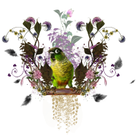Netter Papagei mit Blumen