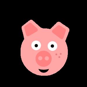Schwein Geschenk Idee