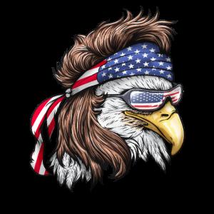 USA Amerika United States