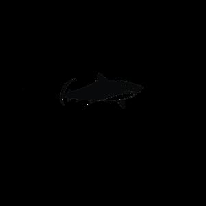 Tigerhai Silhouette