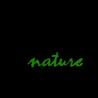 Natur Baum Gras