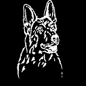 deutscher Schäferhund Portrait