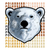 Eisbär Bär Raubtier Arktis Winter Schnee Eis