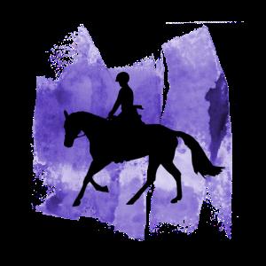 Reiterin Reiter Pferde Fan Dressur Reiterin Ross
