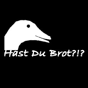 Hast Du Brot ?!? Ente fragt nach Brot. Alter Meme