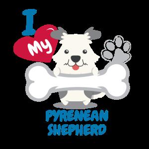 Pyrenäischer Schäferhund