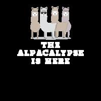 Der Alpacalypse ist hier lustiges Alpaka