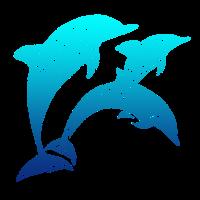 Delfin Ozean Wasser Meer Fisch Wellen Flipper