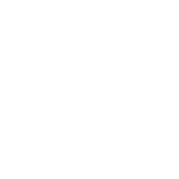 made in 1979 ltd edition